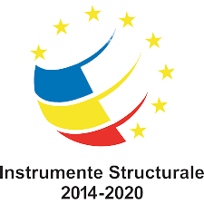 instrumente-structurale